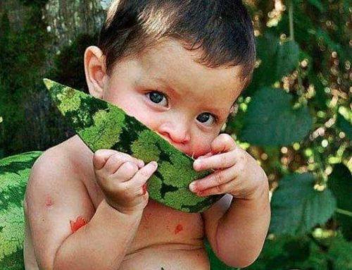 La importancia de las frutas en verano